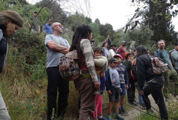 Cerro Codell (1)